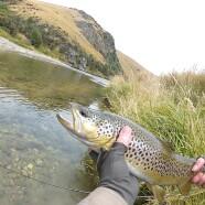NZ 2013: Day 4 – 5 – Tough Rivers